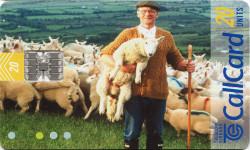 Beautiful Ireland - Farmer and Field